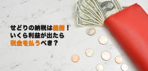 せどりの納税は義務ですよ!いくら利益が出たら税金を払うべき?